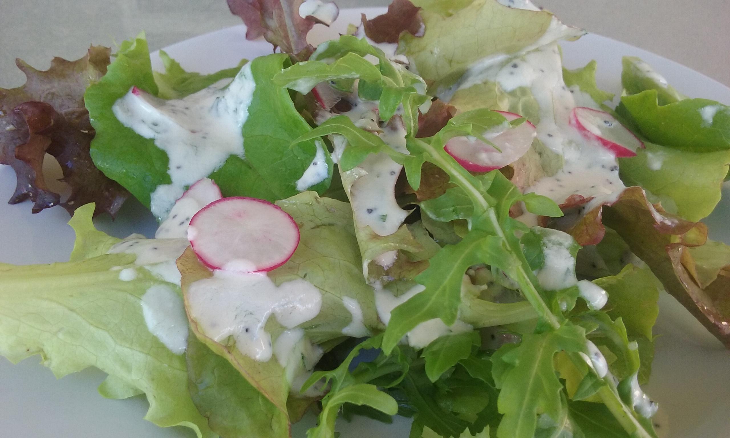 Spring Greens Salad w/ Poppy Seed Dressing